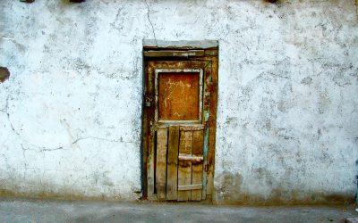 Reflexiones sobre La puerta, de Magda Szabó